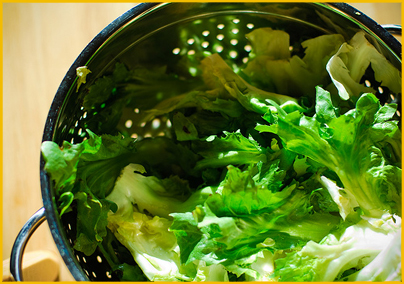 Escarole in a Colander